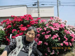 Photo1097