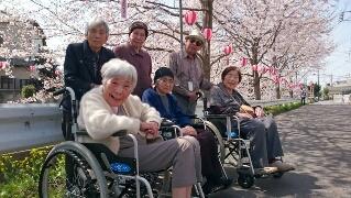 千歳桜祭り
